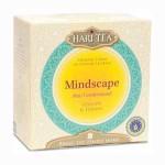 Mindscape: Tisana di erbe e spezie con zenzero ed erba limonina